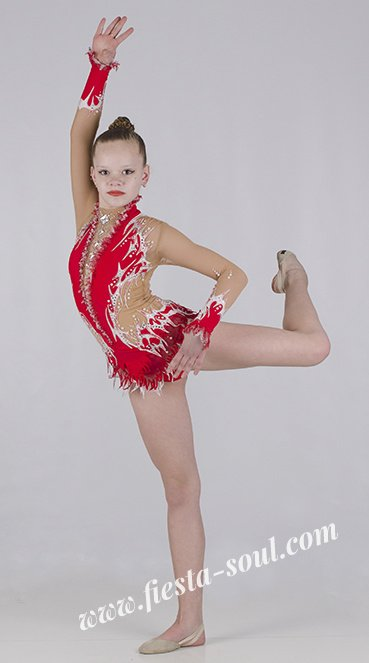 swimsuit forrhythmic gymnastics